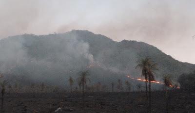 Começa a campanha contra as queimadas em linhas de transmissão de energia