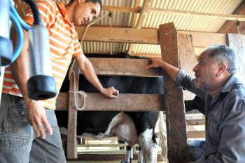 Luiz Cláudio diz que bovinocultura leiteira em Rolim mostra resultados