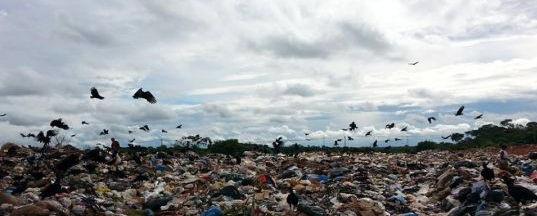 Corpo de bebê é encontrado por catadores de lixo em Porto velho