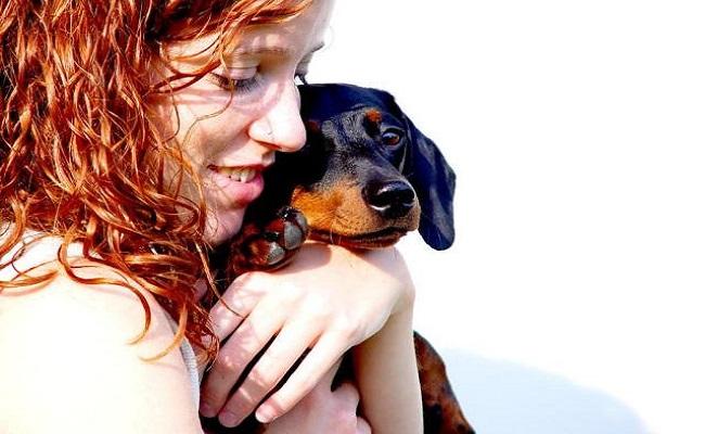 Estudo demonstra que cães também sentem ciúmes
