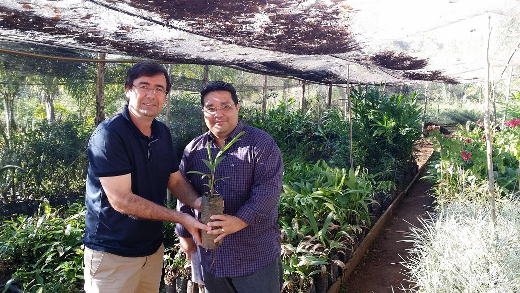 Deputado Jaques Testoni doa mudas de Plantas Ornamentais (1)