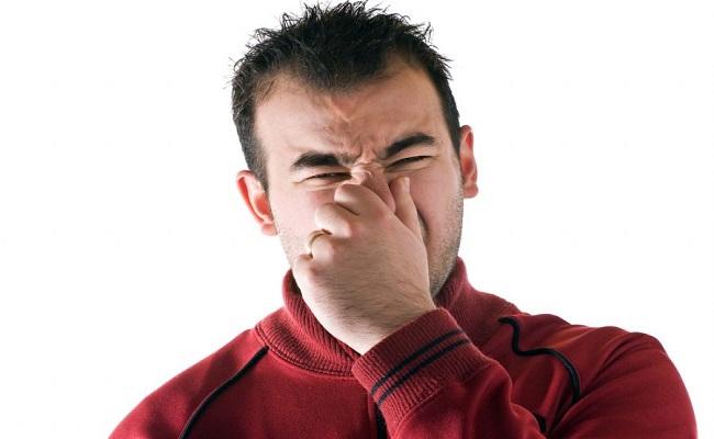 Cheirar pum pode prevenir câncer, ataque cardíaco e demência, diz estudo