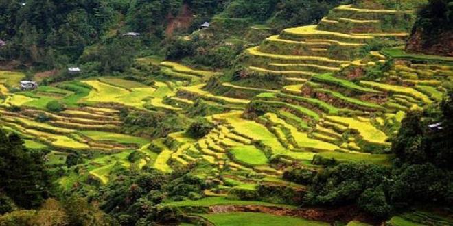 Sagada, um pequeno tesouro filipino ameaçado pelo turismo incontrolado