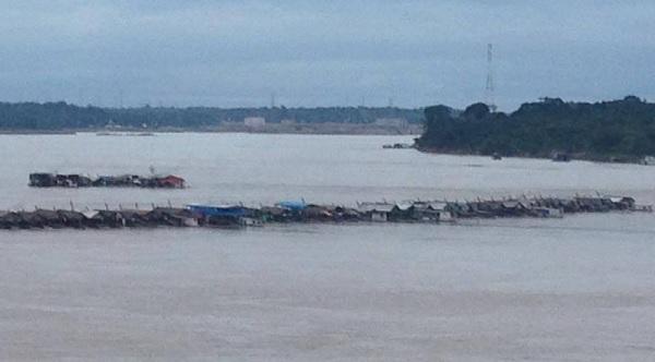 Contra garimpagem, população bloqueia ponte da BR 319 em Porto Velho