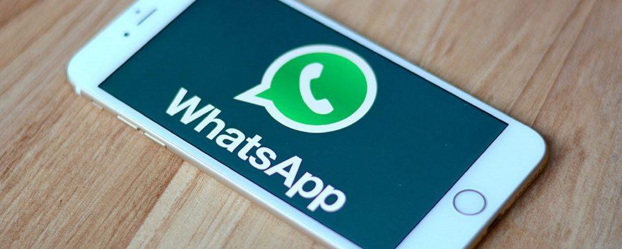 WhatsApp Web lança atualização que afeta layout e GIFs; entenda