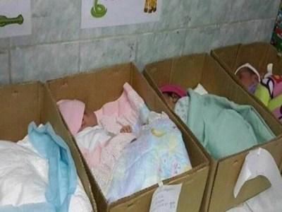 recém-nascidos dormindo em caixas de papelão