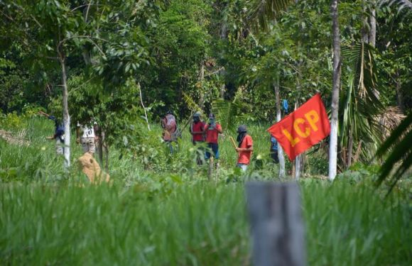 Civil e PM deflagram operação contra invasão de terras na 429