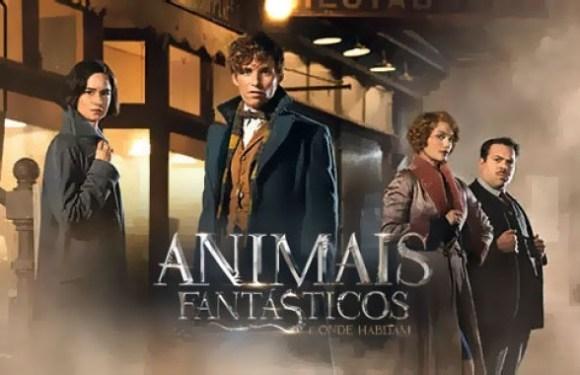 Animais Fantásticos e Onde Habitam, um dos filmes mais aguardados do ano, chega aos cinemas