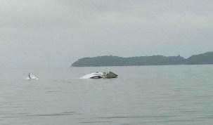 Avião de pequeno porte cai no mar em Paraty, na Costa Verde do Rio