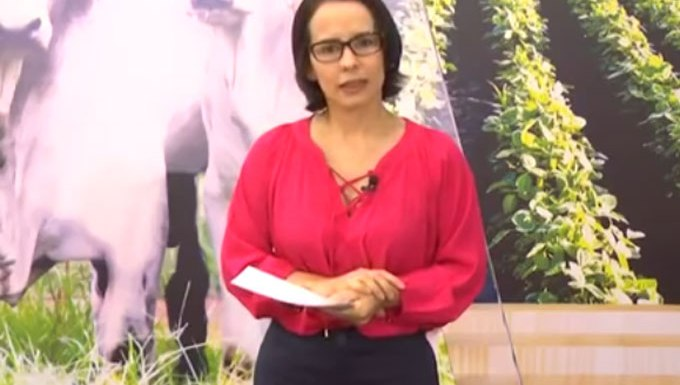 """Jornalista diz que índio de verdade """"tem que morrer de malária"""" – Veja vídeo"""