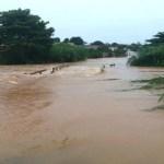 Rio transborda após forte chuva e encobre pontes em Jaru (RO)