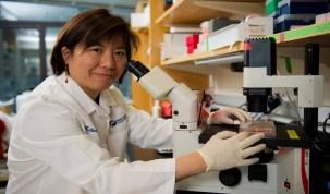 Vacina contra o câncer já é testada em humanos