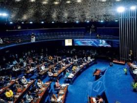 No Dia das Mulheres, senadoras farão greve geral