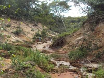 Usina é multada em R$ 22,5 milhões por degradar terra indígena em MS