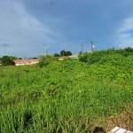 Prefeitura de Porto Velho (RO) exige que donos limpem terrenos, construam muros e calçadas