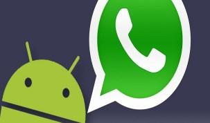 WhatsApp está acabando com a memória do smartphone? Ajudamos a resolver