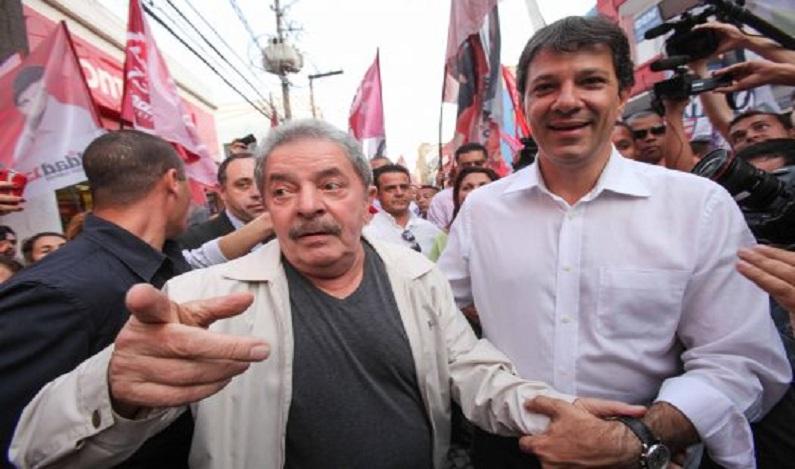 Haddad afirma que não concorrerá a nenhum cargo este ano