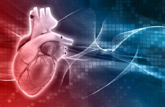 Programa pode prever ataques cardíacos com até 6 horas de antecedência; veja como funciona