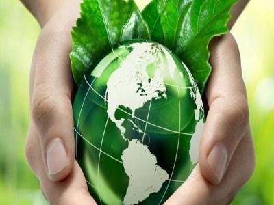 No Dia Mundial do Meio Ambiente, governo cria unidades de conservação