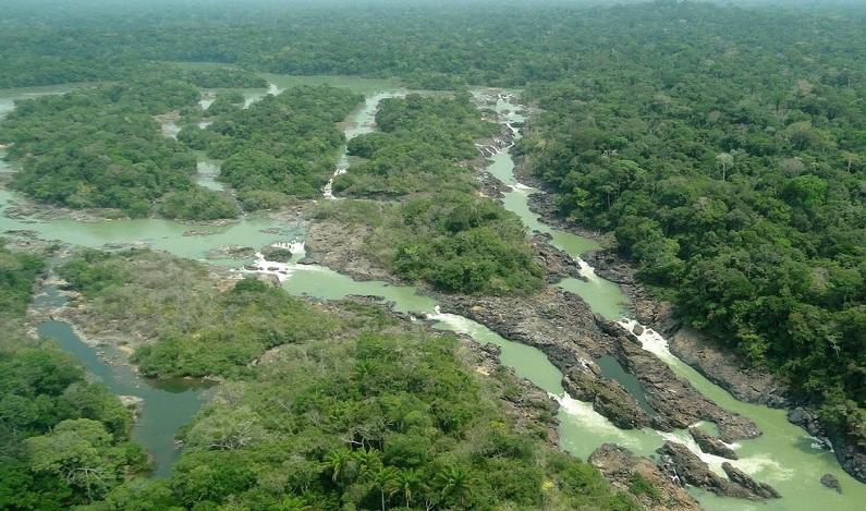 Governo envia ao Congresso projeto de lei que reduz floresta nacional no Pará