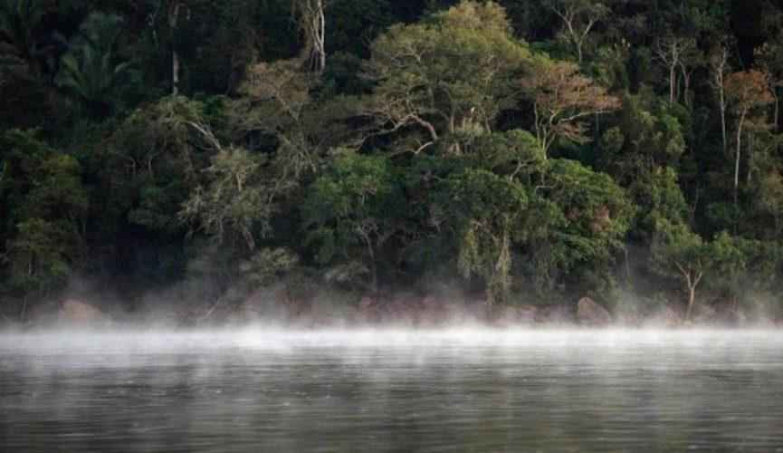 Justiça do DF suspende atos para extinção de reserva na Amazônia