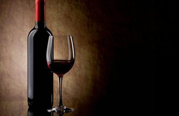 Para amantes de vinho: dicas para aproveitar o melhor do enoturismo no Brasil