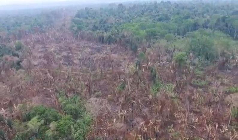 Operação policial descobre área de desmatamento em APP de Rondônia