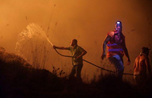 Incêndios florestais deixam mais de 20 mortos em Portugal
