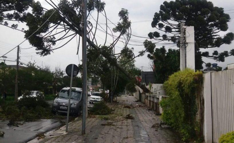 Ventos de 72 km por hora atingem Curitiba e causam acidente