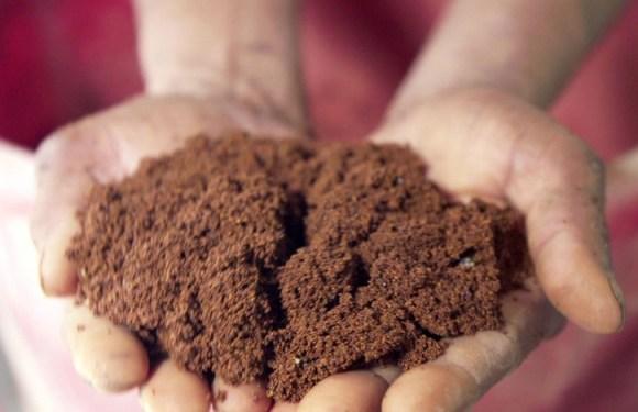 Os grãos de resina que podem pôr fim ao maior envenenamento em massa da história