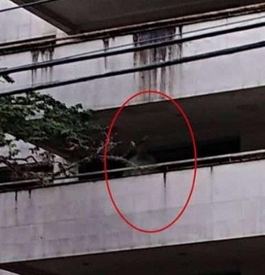Mulher afirma ter flagrado fantasma de Pablo Escobar em edifício onde ele morou em Medellín; veja imagem