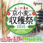 京小麦の収穫祭2020