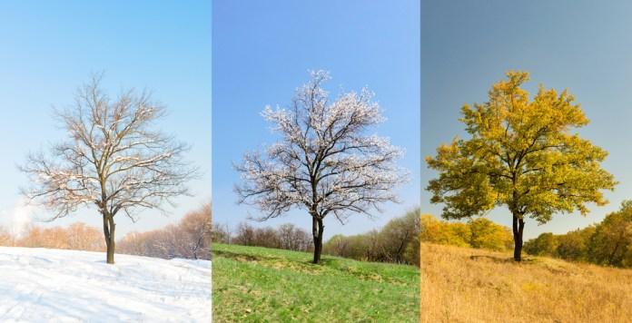 seasonal changes, elderly with chronic illness