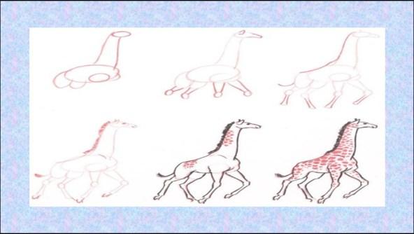 رسومات اطفال 2 حيوانات سهله