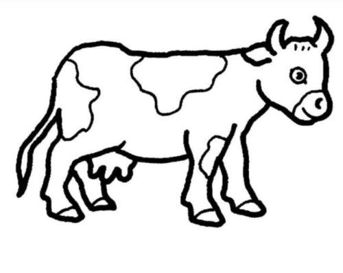 صور رسومات اطفال للتلوين بسيطة