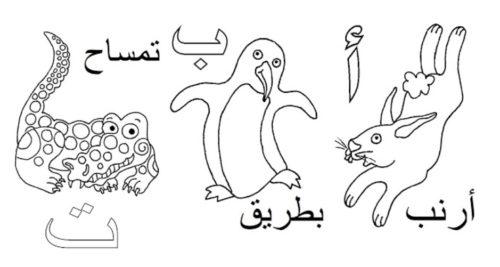 رسومات أطفال تعليمية ملونه أرنب بطريق تمساح