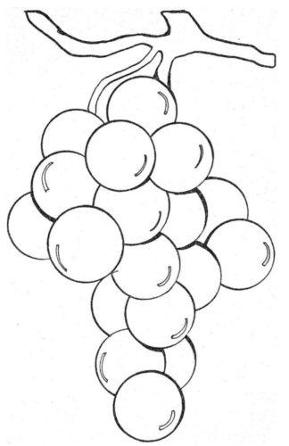 رسومات كيوت ملونة لتعليم التلوين للاطفال