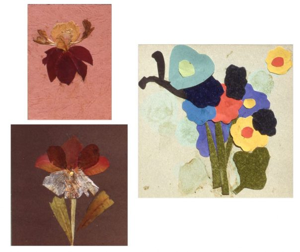 Image of three different collages depicting flowers