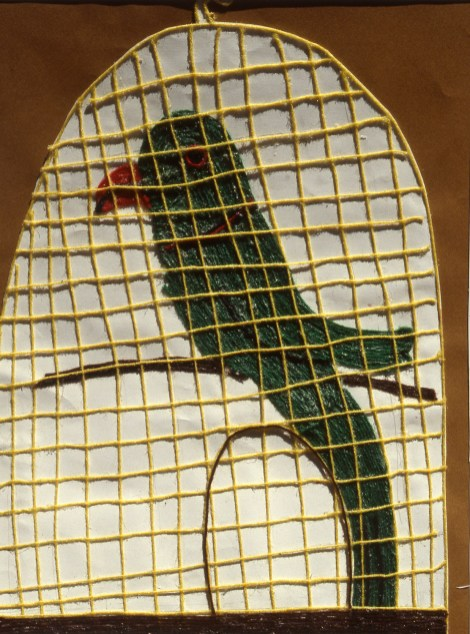 Collage image of a pet parrot in a cage