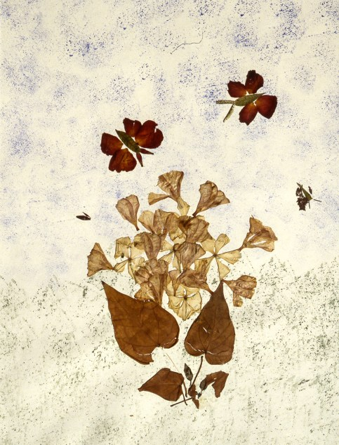 Collage depicting flowers and butterflies using pressed flowers and paint