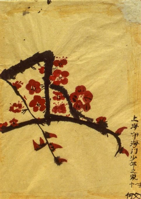 Image of blossoms on a branch