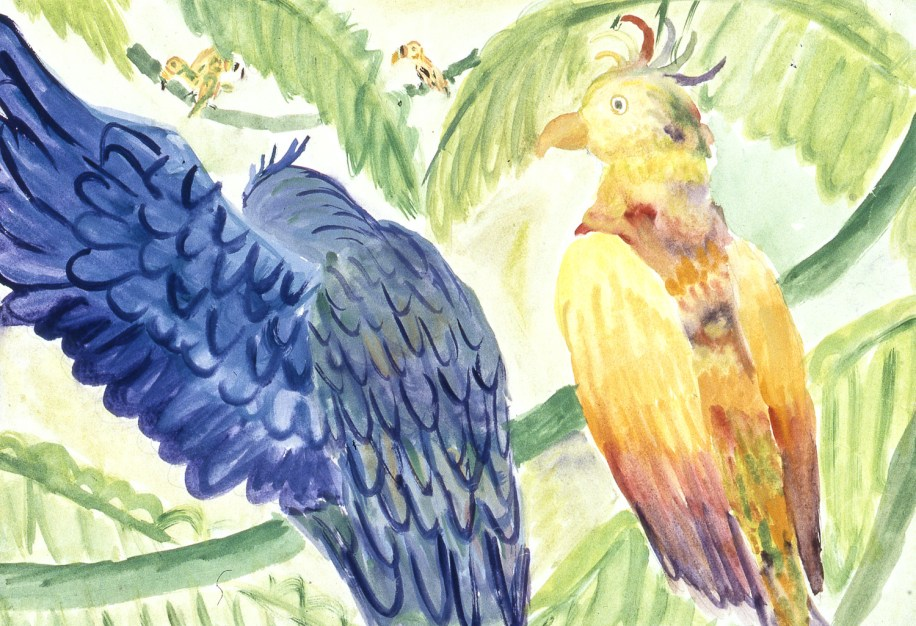 Drawing of two tropical parrots