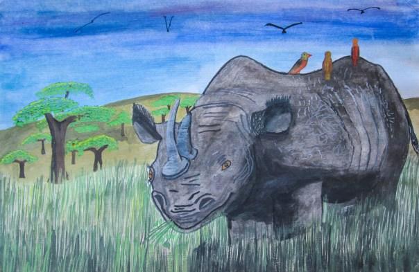 Rhino: An Endangered Victim
