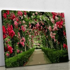 Through the Rose Garden