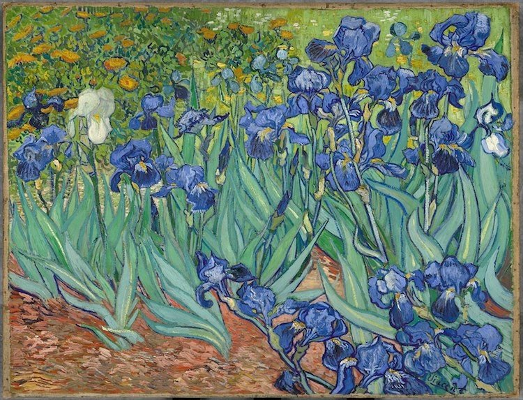 Learn about Van Gogh's popular paintings