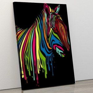 Abstract Colourful Zebra