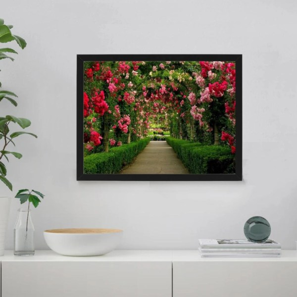Through the Rose Garden Paint By Numbers