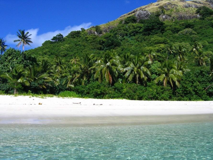 Tropical Sand Pacific Beach Palm Water Fiji
