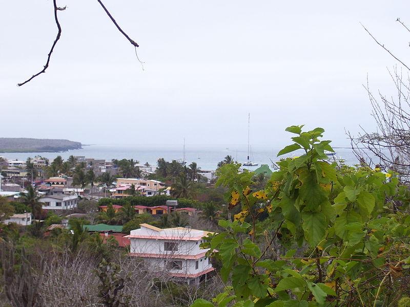 800px-View_of_Santa_Cruz,_Galapagos