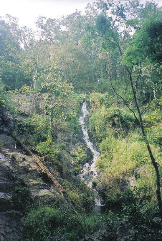 402px-Khlong_Wang_Chao_National_park_-_Namtok_Khlong_Samo_Kruai